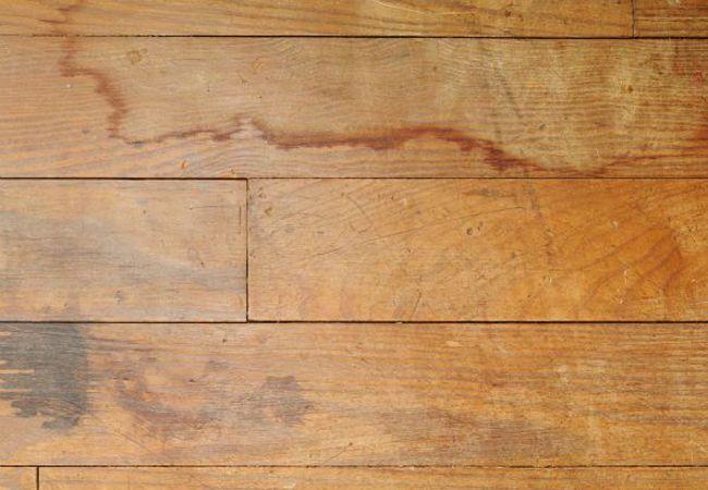 Cách khắc phục đồ gỗ bị ố nước